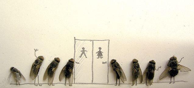 dead_flies_art_07